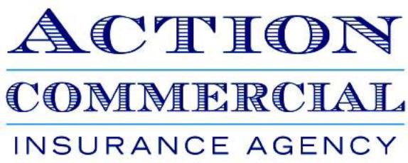 Fleet Insurance Orem Ut Spanish Fork Ut Action Commercial
